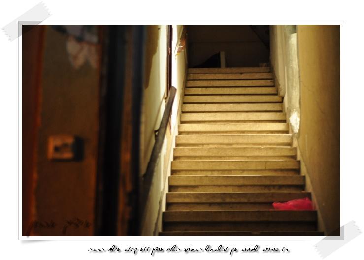 חדר מדרגות | צילום : איציק אהרון